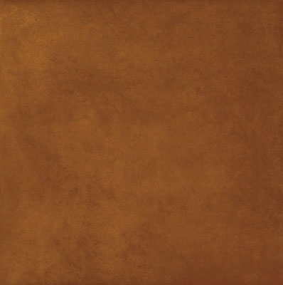 Polis Emotions 00112950 Cognac 34*34