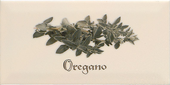 Ape Metro Decor Oregano Crema 10x20