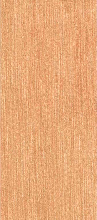 Polis Breeze Orange 20*45